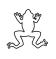frog lines vector image