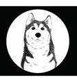 Husky B vector image