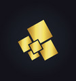 square gold digital logo vector image vector image