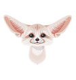 cartoon fennec fox portrait on white vector image