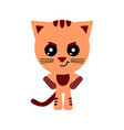cute cat cartoon angry character white vector image vector image