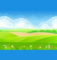 flower meadow in hills on vector image vector image