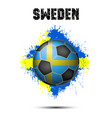 soccer ball in the color of sweden vector image