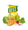 best price discount poster with fresh vegetable vector image
