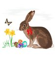 Easter little bunny with daffodils and butterflies vector image
