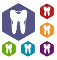 Human tooth icons set vector image vector image