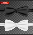 realistic white and black bow tie vector image