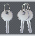 set of key on ring on transparent background vector image vector image