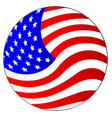 stars and stripes ball vector image vector image
