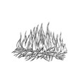 traditional burning camping fire monochrome vector image vector image