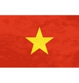 True proportions Vietnam flag with texture vector image vector image