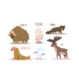 collection of arctic animals with names polar owl vector image