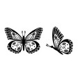 drawing butterfly stencil butterfly moth wings vector image vector image