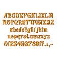 mystical orange font vector image