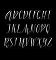 pen handwritten alphabet vector image vector image