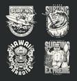 surfing school vintage monochrome logos vector image vector image