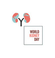 world kidney day with frame vector image vector image