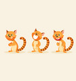 cat emotion vector image