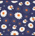 chamomile flowers seamless pattern on dark blue vector image