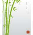 Chinese bamboo or japanese bambu asian vector image vector image