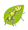 colorful hand drawn of ant vector image vector image