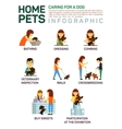 flat infographic caring vector image