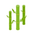 Green bamboo stems icon isometric 3d style vector image vector image