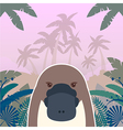 platypus on jungle background vector image vector image