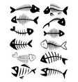 set silhouettes fish skeletons collection vector image