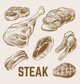 sketch meat hand drawn steak set vector image vector image