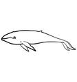 whale contour vector image vector image
