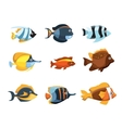 Cute cartoon tropical exotic freshwater aquarium vector image