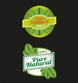 100 Percent Pure Nature Green Sign Label vector image vector image