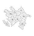 azerbaijan map of polygonal mosaic lines rays vector image