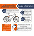 bike infographic vector image