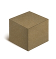 Realistic Cardboard Box Isolated On White vector image vector image