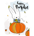 the rabbit found a big happy pumpkin fall autumn vector image