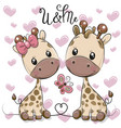 two cartoon giraffes on a hearts background vector image vector image