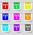 Decorative Zodiac Aries icon sign Set of vector image