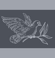 dove or pigeon with olive branch isolated sketch vector image vector image