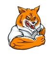 Red Fox mascot team label design vector image vector image