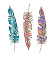 set of bright feathers vector image vector image