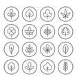 set round line icons leaf vector image