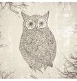 Vintage Owl vector image vector image