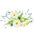 a bouquet of white flowers vector image