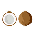 coconut isolated on white background vector image vector image