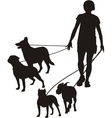 Female and four dogs vector image vector image