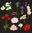 flower cartoon icon of blooming garden plant vector image