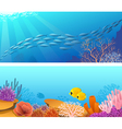 Sea life banners vector image vector image
