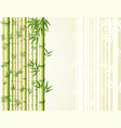 bamboo background design with golden and green vector image vector image